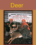 deer hunting, deer hunting guides, deer hunting outfitters, maine deer hunting guides
